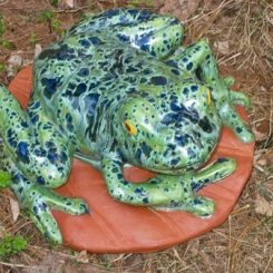 frogs04