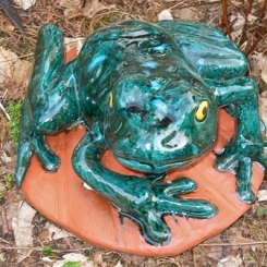 frogs07